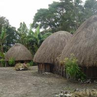 Индонезия, Западное Папуа, традиционный жилой дом honai
