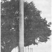 8. Лаурья-Нандангарх. Столб-стамбха Ашоки (243 г. до н. э.)