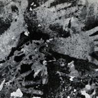 Изображение рук. Пещера Паттэ. Наскальная живопись. Охра. Неолит. Южный Сулавеси