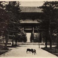 21. Южные ворота (Нандаймон) Тодайдзи