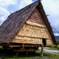 Индонезия, Центральный Сулавеси, традиционный жилой дом tambi